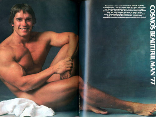 Arnold Schwarzenegger's gay past